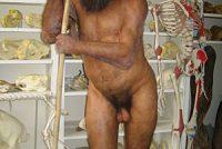 De minske is jit wat minder homo sapiens as dat er tocht hie
