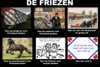 Undersyk: fiele jo jo Fries, Nederlanner of Europeaan?