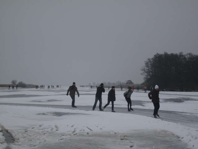 Winterwille 2013
