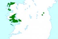 Iersk wurdt funksje-eask foar Ierske amtners