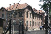 Auschwitz betocht