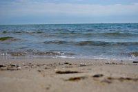 FNP: stipe foar seebad yn Harns en mear ynsette op enerzjybesparring