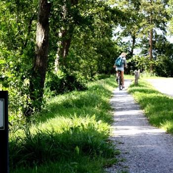 Lutske fiets Sagen jagen route