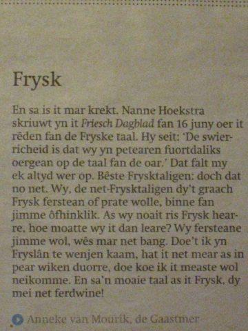 frysk-yn-friesch-dagblad