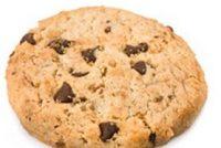Jabik van der Bij: Ferplichte koekjes