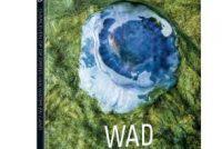 'WAD' – Oerlibje op de grins fan wetter en lân