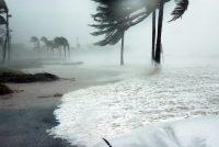 Deaden troch orkaan Dorian op Bahama's