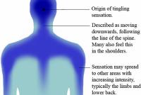 Wittenskippers ûndersykje oft in 'braingasm' echt bestiet