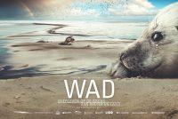 Mear as 1100 minsken yn Noardeast-Fryslân sjogge film WAD