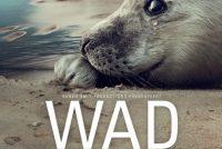 """""""WAD"""" in film, no te sjen yn alle fjouwer filmhuzen yn Noardeast-Fryslân"""
