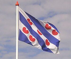 Petear oer it Frysk op 26 juny yn De Haach: gean mei!