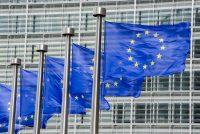 Europeeske ferkiezings: de FNP jout gjin stimadvys