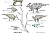 Fossyl yn edelstien blykt nije dinosauriër