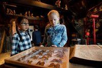 Krystfakânsje yn Natuermuseum Fryslân