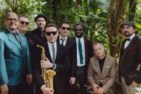 New Cool Collective yn Neushoorn