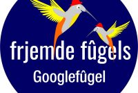 Jan Schokker: Googlefûgel