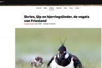 Vroege Vogels jout omtinken oan Fryske fûgelnammen