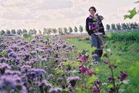Boeren en túnkers soargje foar it lânskip en fersterkje bioferskaat
