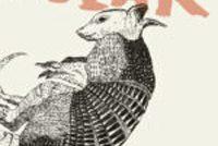 Literêre jongereinpriis 'De Inktaap' nei Nina Polak