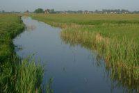 In takomst- en wetterbestindich Fryslân