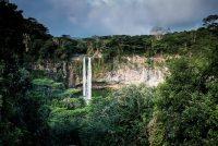 Untbosking Braziliaanske Amazône op heechste nivo sûnt 2008