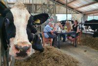 Kom del by boeren en túnkers en genietsje fan it plattelân
