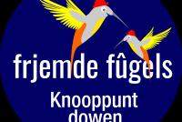 Jan Schokker: Knooppuntdowen