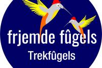 Jan Schokker: Trekfûgels